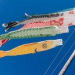 カープファンに捧ぐ!「鯉のぼり」を上げない、鯉を祀る町が京都にあった!